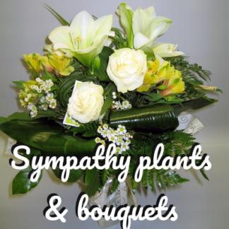 Sympathy bouquets & plants