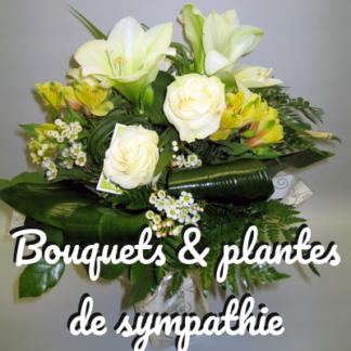 Bouquets et plantes de sympathie
