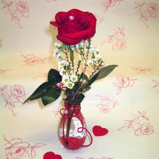 My Valentine STV6